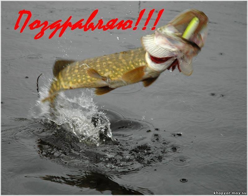 Поздравления с днем рождения мужчине-рыбаку прикольные