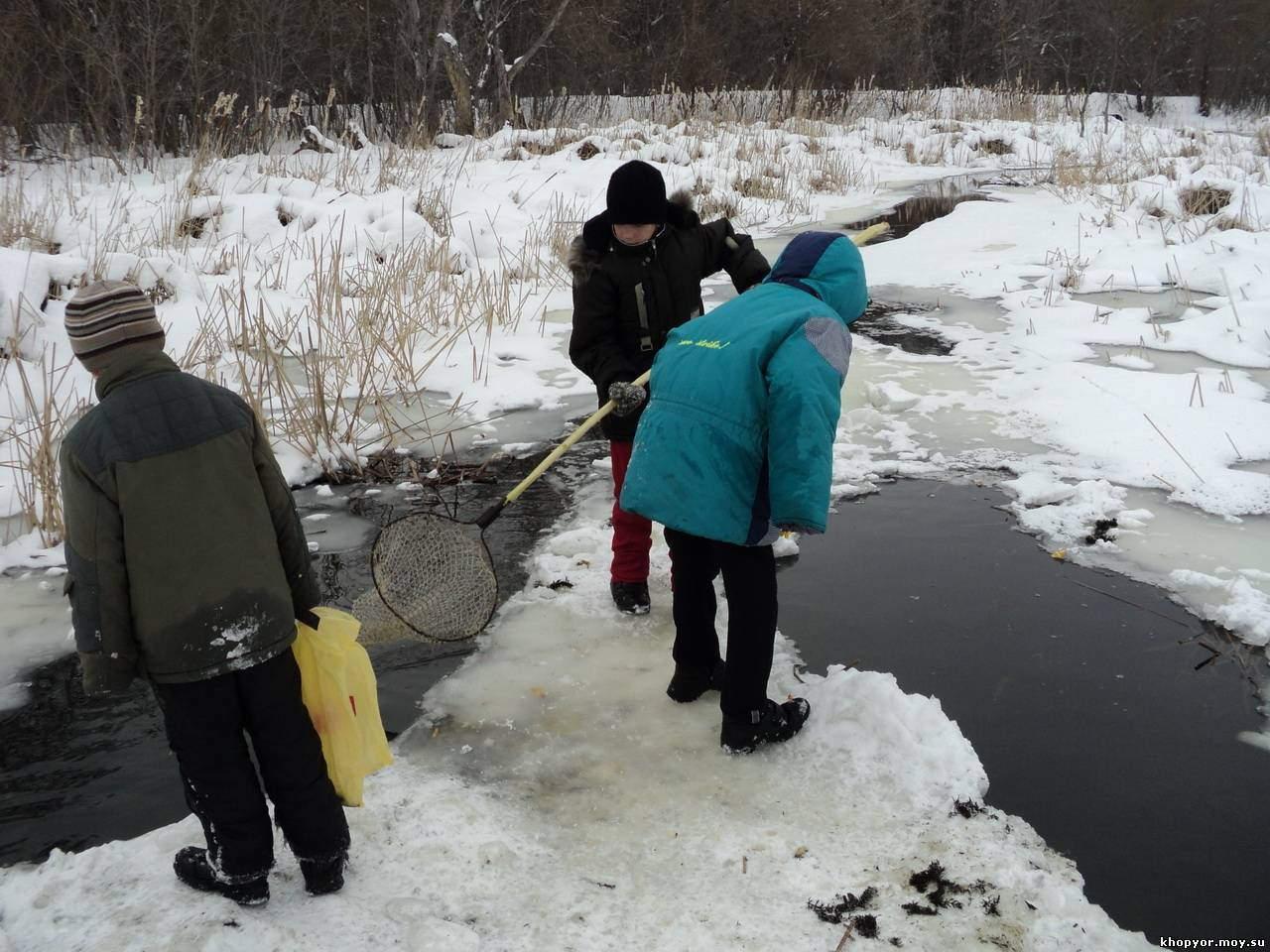 ловить рыбу в проруби