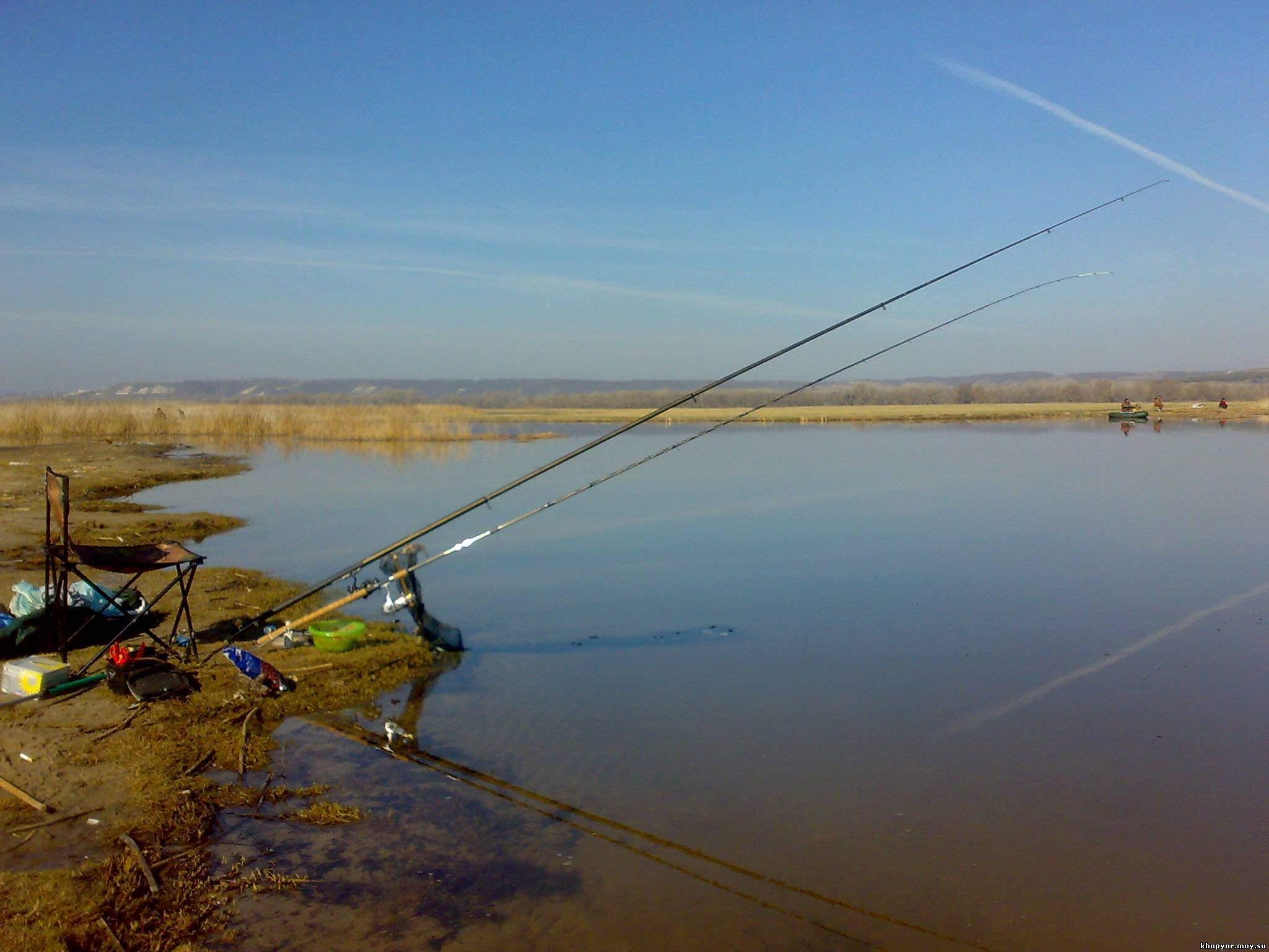 рыбалка с берегу на озере ильмень форум