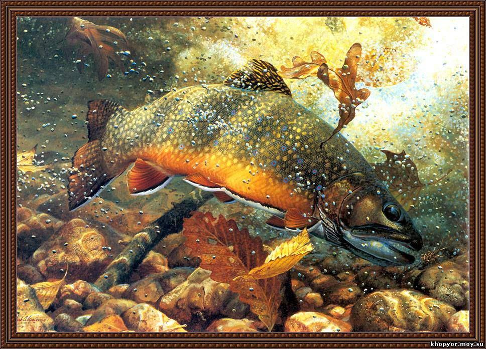 Рыба картина раскраска
