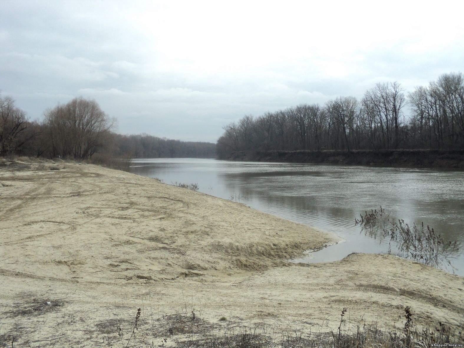 форум рыбаков воронежской области река дон